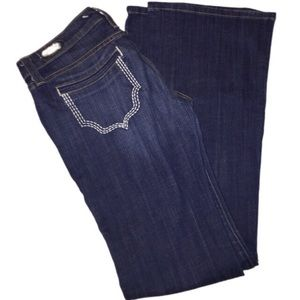 Freedom of Choice 28 Anthropologie jeans
